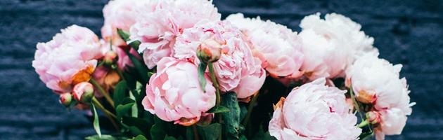 Florist in Bedford